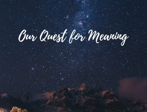 Our Quest for Meaning